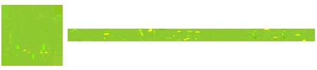 Deluxe Janitorials Logo
