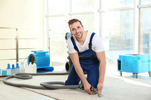 Strata Cleaning Service Abbotsford